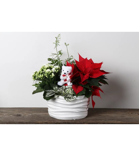 "8"" Ceramic Christmas planter"