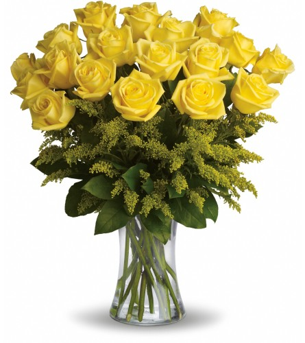 Friendly Yellow Roses