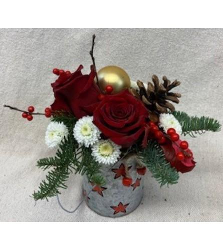 Bells and Stars Christmas Night