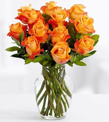 1 Dozen orange roses in a vase