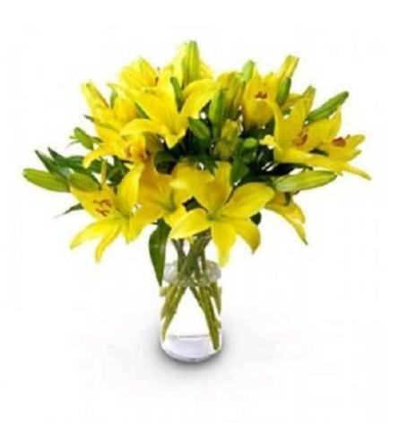 1 Dozen Lily's Vase