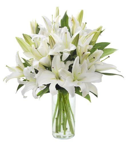 1 Doz white lilies
