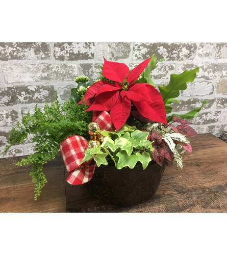 Christmas Basket Garden