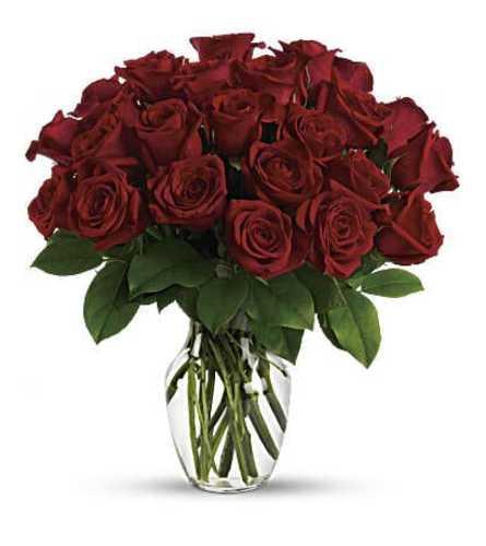 36 Red Rose Luxury