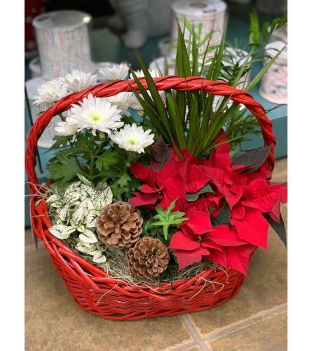 Holly Jolly Christmas Planter Box - Red Poinsettia