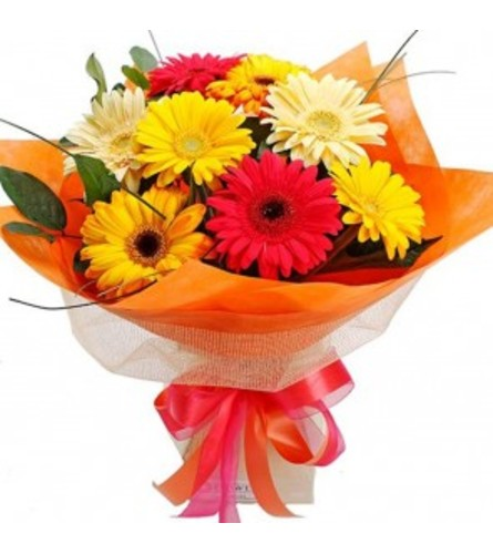 ONE DOZEN LOOSE WRAPPED GERBERA DAISYS WITH FILLERS