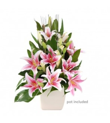PINK LILYS IN A VASE