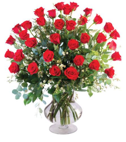 3 DOZEN RED ROSES IN A VASE