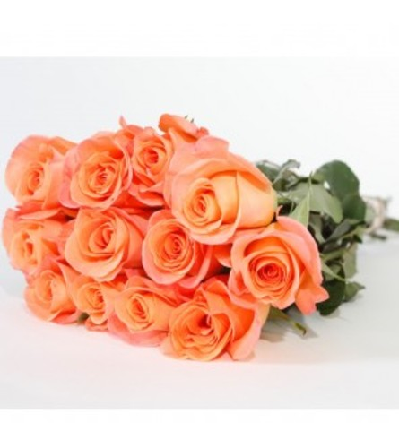 1 DOZEN LOOSE ORANGE ROSES