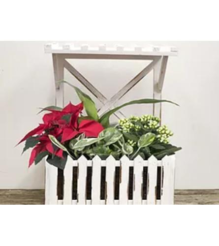 Window Box Wood Planter