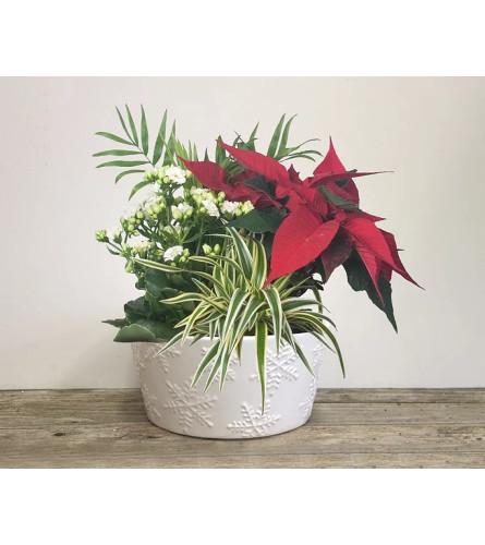 Ceramic Christmas Planter
