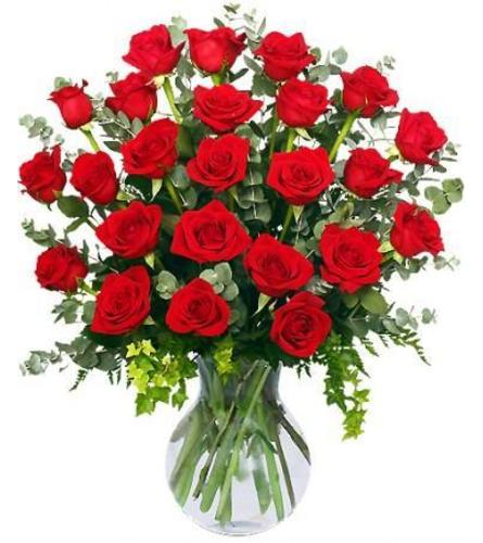 24 RADIANT RED ROSES  ARRANGED IN A TALL GLASS VASE