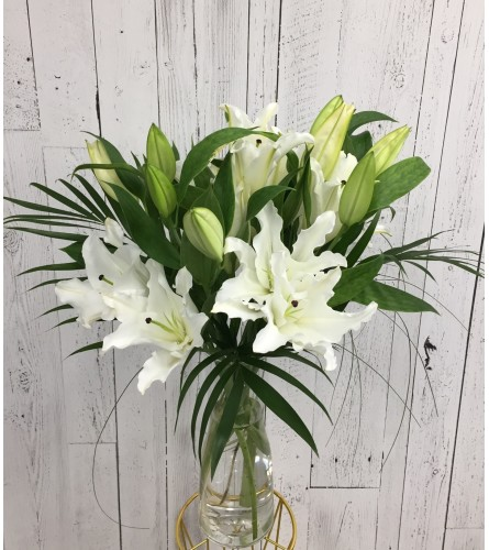 Lily Special !