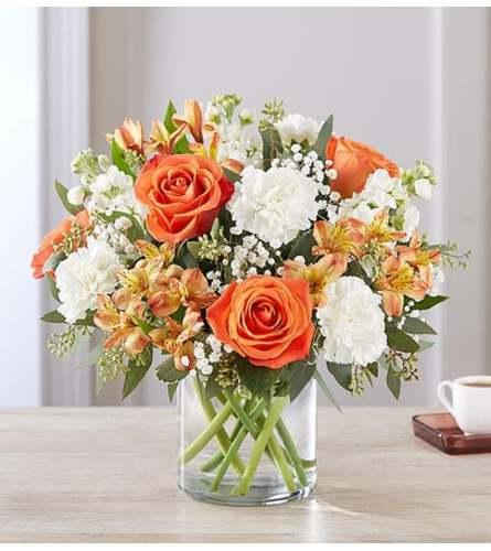 Sweet Citrus Bouquet-Large