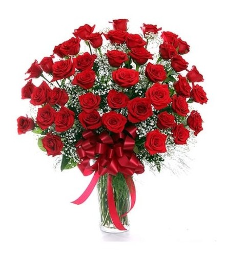 Thirty-Six Red Roses
