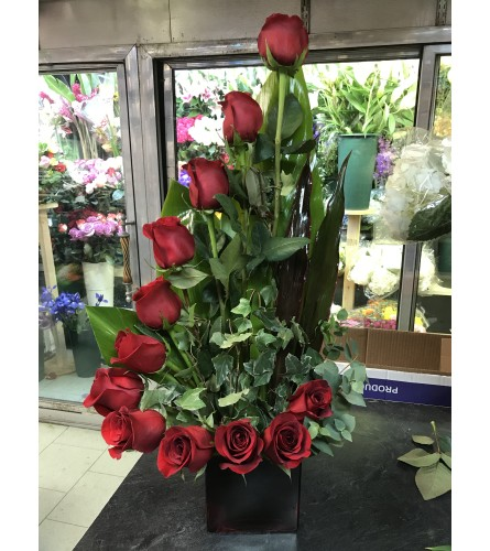 Red Roses Half Moon