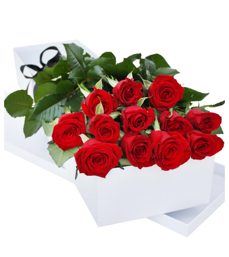 One Dozen Red Roses Boxed