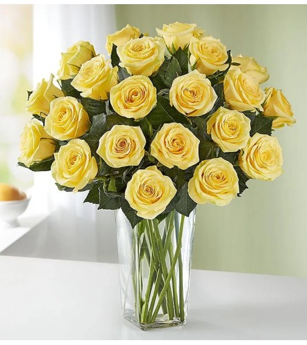 Dozen Yellow Long Stem Roses