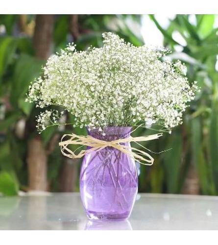 Baby's Breath vase arrangement