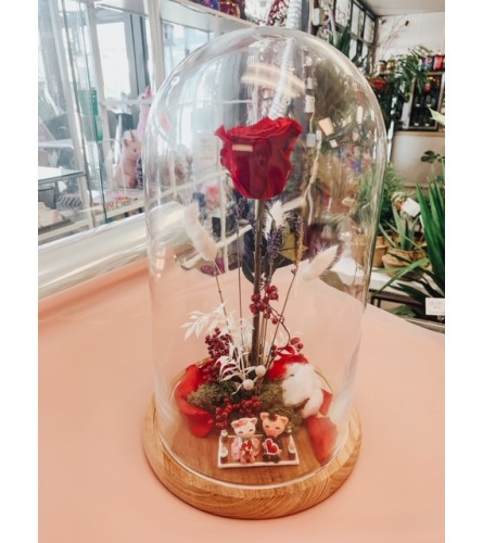Beauty and the Beast - Red Rose / forever roses