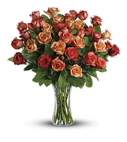 Sunrise Rose Arrangement (Three Dozen)