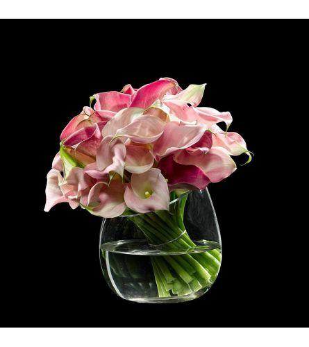 Pink Calla Simplicity