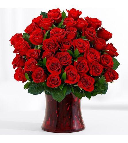 Romantico Red Roses