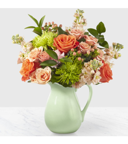 THE POP OF COLOR PITCHER