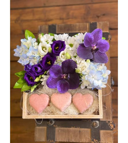 Be my Valentine2