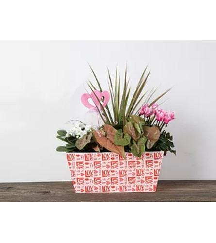 Hugs and Kisses Wood Planter-Red and Pink