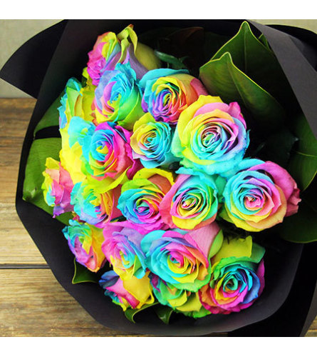 12 Rainbow Roses Wrapped In Cello