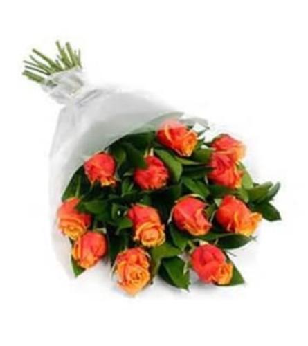 12 Orange Rose Wrapped
