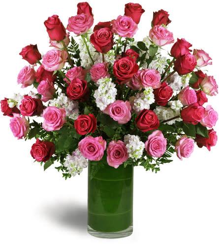 Opulent Roses In  Vase