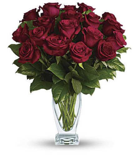 Teleflora's Classique_12stem Red Rose