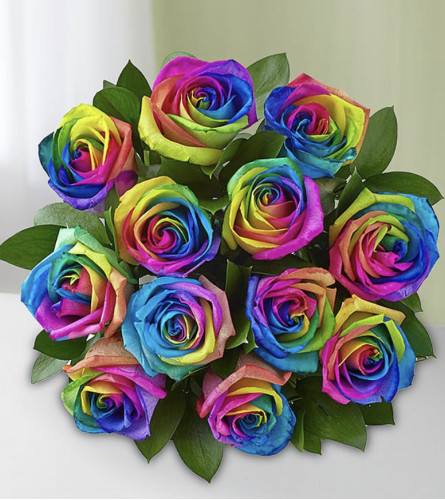 Rainbow Dozen in a Vase (Valentine's Day Only)