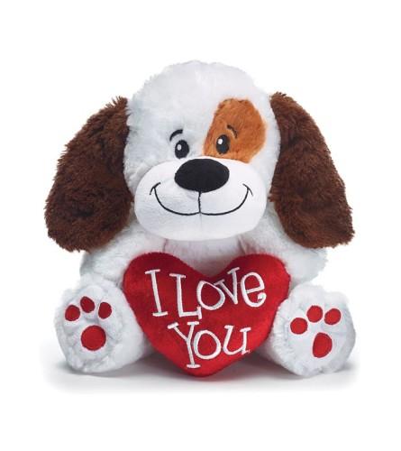 Puppy Loves