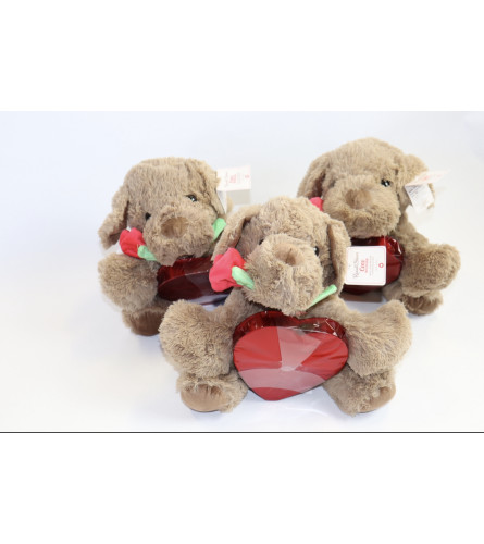 Romantic Bear with Chocolates