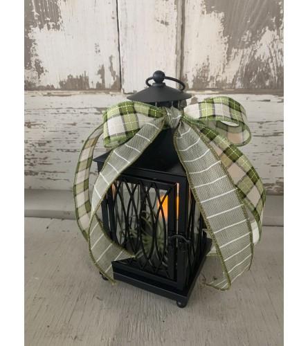 Air Plant Lantern