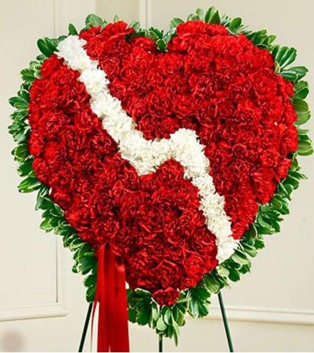 Carnation Standing Broken Heart