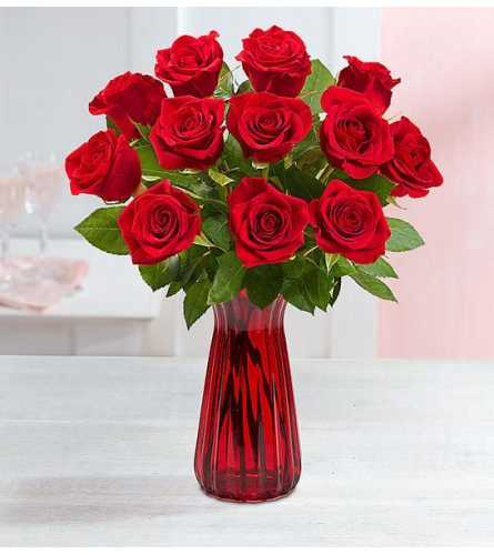 One Dozen of Red Roses