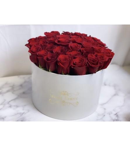 Amazing Box Red