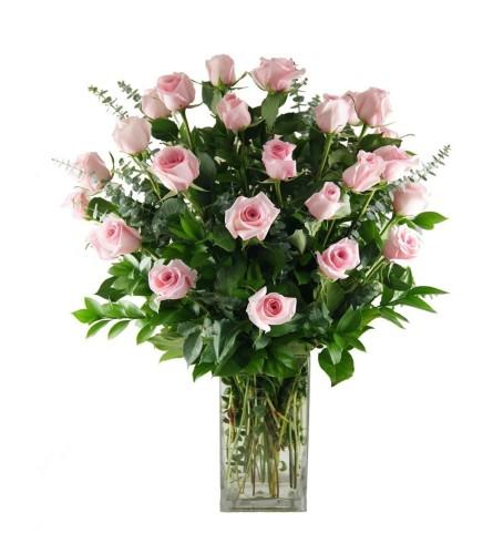 2 Dozen Stunning Pink Roses