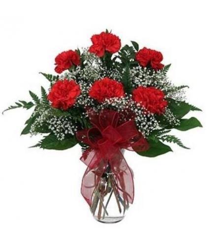 6 Carnation vased