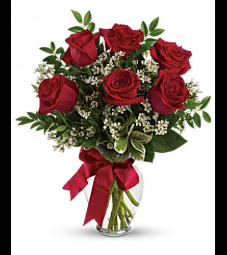 Half Dozen Red Rose Arrangement