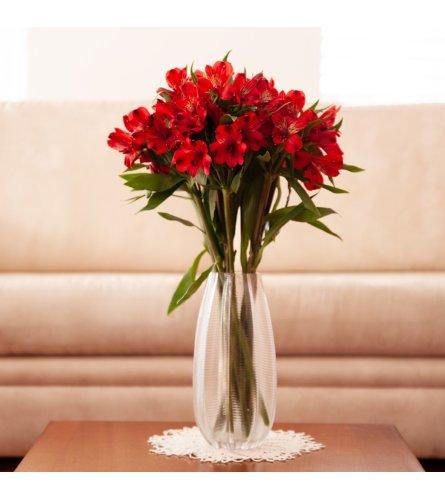 Romantic Red Peruvian Lilies