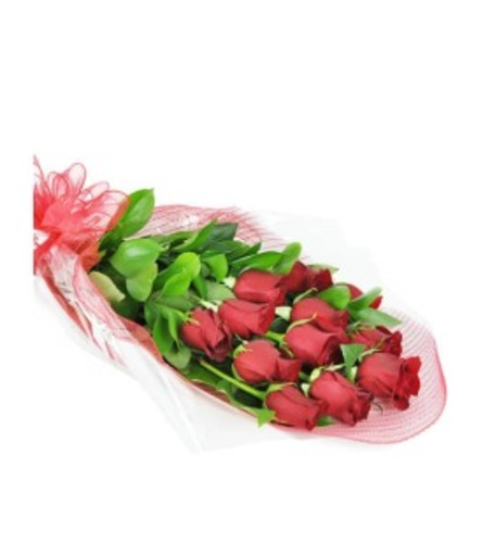 Long-Stemmed Red Roses Wrapped