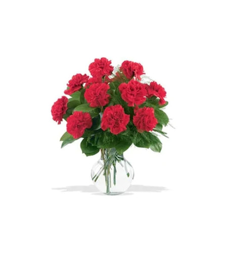 12 Red Carnations Arranged in a Vase