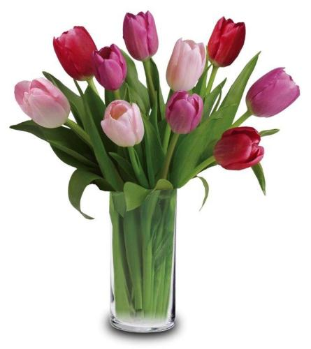 10 Tulips Arranged in a Vase, Assorted Bright Colors