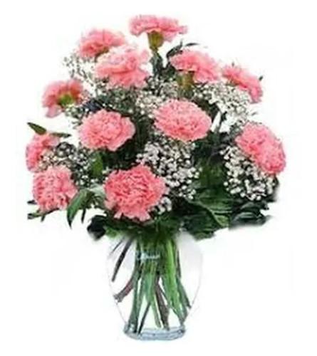 12 Pink Carnations Arranged in a Vase