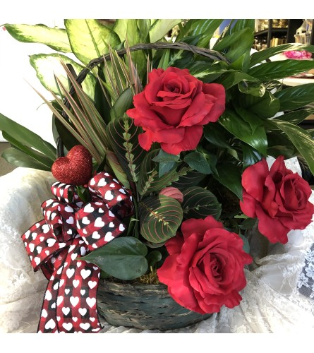 Valentine's Garden with red Roses